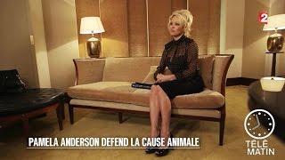 Carré VIP - Pamela Anderson - 2016/01/20