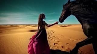 Видео фон для сайта - Девушка на лошади в пустыне | rowpost.com