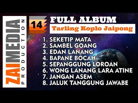 full-album-tarling-koplo-jaipong-vol.-14-(cover)-by-zaimedia-production-group
