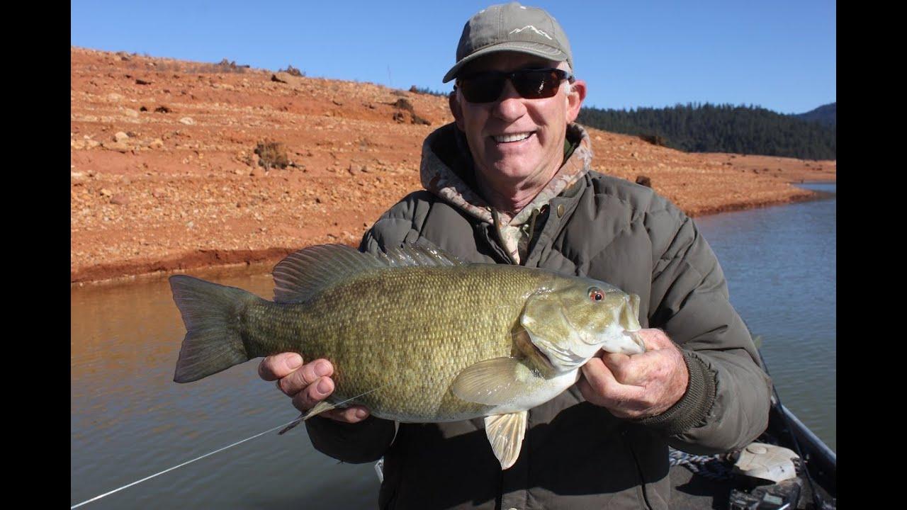 Smallmouth bass fishing trinity lake with steve for California bass fishing