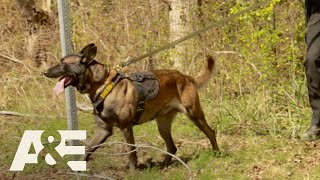 Live PD: Best of K9 Officers | A&E