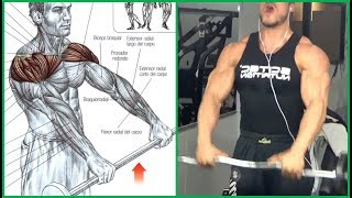 8 Shoulders Workout,  8 Ejercicios para Hombros | Fitness Body