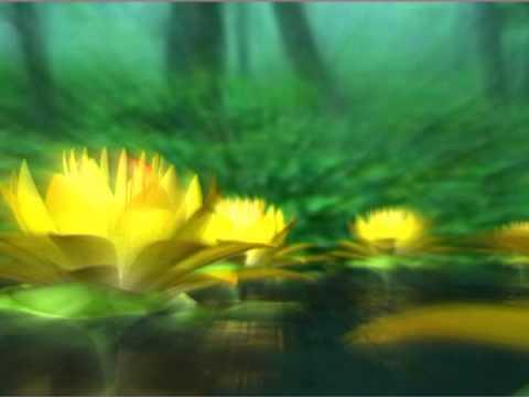 Amazing lotus flower motion graphic animated background free amazing lotus flower motion graphic animated background free video download mightylinksfo