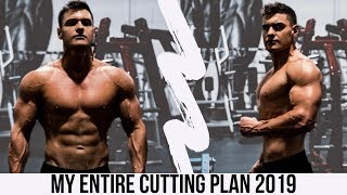 My Summer 2019 Cutting Plan | Full Day Of Eating And Training