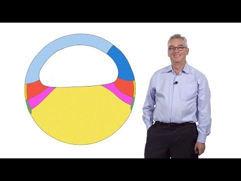 Richard Harland (UC Berkeley) 1: Early Frog Development: How To Make A Tadpole