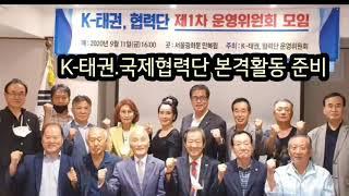 [백수의 창-제208화] K-태권, 국제협력단 본격활동준비.