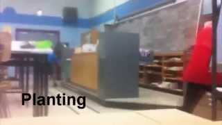 Stink Bombs in Classroom Prank