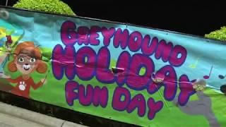 2018 Greyhound Holiday Fun Days
