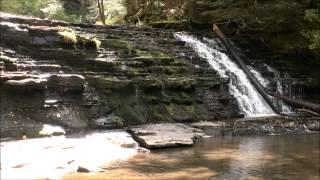Fall Brook Falls, Salt Springs State Park, PA