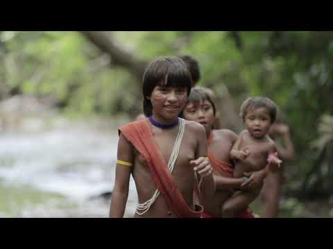 O Papel das Lideranças Indígenas ▶26:04
