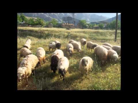 Erzincan Kemah Yahşiler Köyü Resimleri Slayt 2