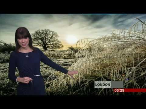 Elizabeth Rizzini London Weather 2017 01 05