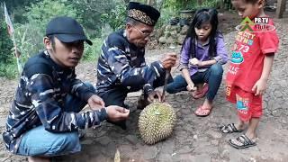 Download Video Review Durian Kanee Wayang MP3 3GP MP4