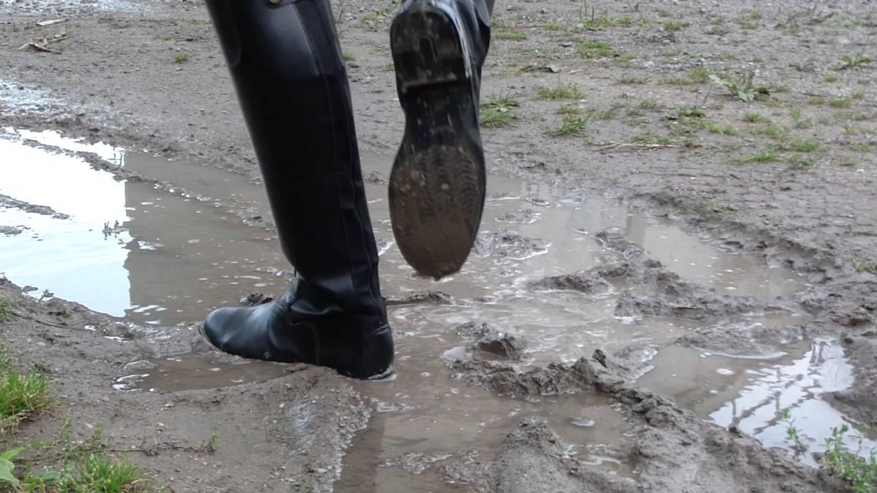 mud lick