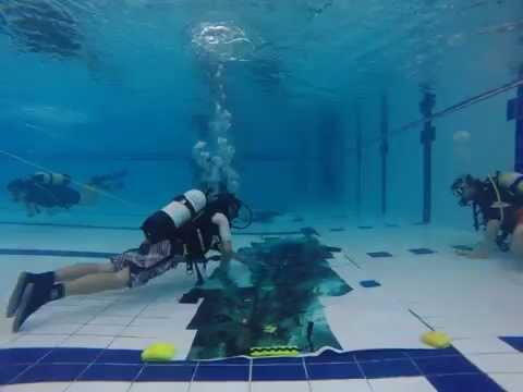 Underwater Scuba Survey