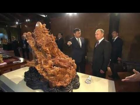 Xi Jinping & Vladimir Putin in Xiamen: Sino-Russian Talks & Visit to Exhibition