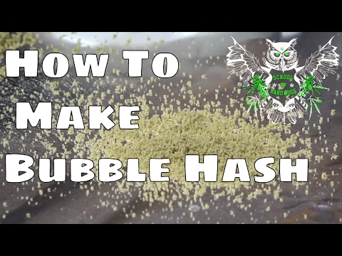 How to Make Bubble Hash From Cannabis Trim | Using Marijuana to Make Water Hash | Weed Concentrates