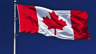#كندا.. تسوية نقدية لأفراد عذبوا في سوريا