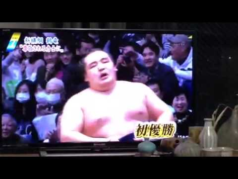 Kakuryu promoted to Yokozuna
