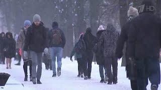 Сразу несколько регионов Центральной России накрыла крупнейшая с начала года метель.