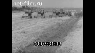 1980г. колхоз Новая заря Астраханская обл