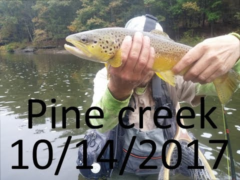 A real awesome day on Pine Creek PA in HD
