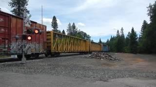 미국 시골 기차 건널목에서 만나는 화물기차