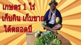 ทำเกษตร 1 ไร่ เก็บกิน เก็บขายได้ตลอดปี