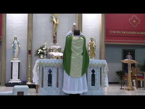 Daily Mass 11/27/20