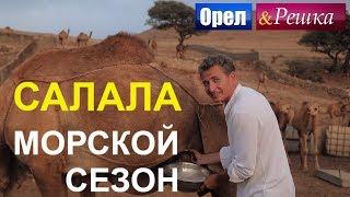 видео Туры в Оман 2018