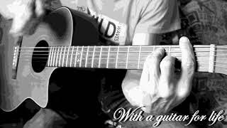 Воины света (кавер на гитаре)