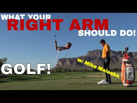 What the RIGHT ARM should do in the golf swing. Top 50 instructor Mike Malaska explains.