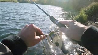 Рыбалка Десна осень.