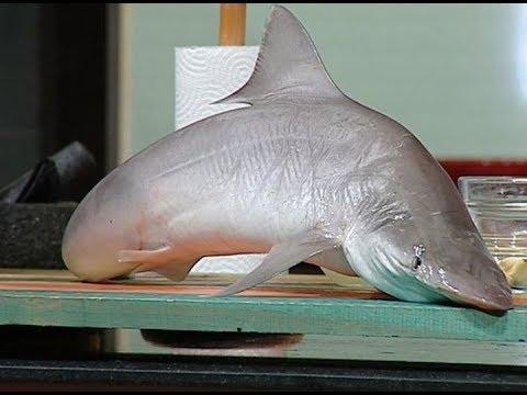 طريقه عمل وصفات من سمكه القرش لاول مره على الفضائيات من ساره عبد السلام فى سنه اولى طبخ