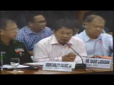 Committee on Public Order and Dangerous Drugs (February 10, 2015)