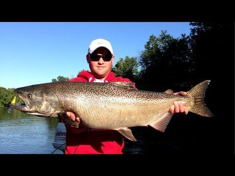 Casting Crankbaits For Chinook Salmon