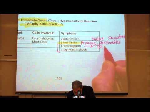 ADVERSE DRUG REACTIONS by Professor Fink