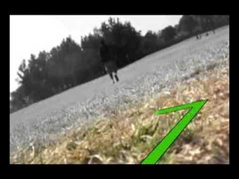 Molemi footprints