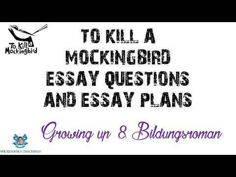 bildungsroman essay - to kill a mockingbird Full title to kill a mockingbird author harper lee type of work novel genre southern gothic, courtroom drama, bildungsroman language english time and place written mid-1950s new york city date of first publication 1960 publisher j b lippincott narrator scout narrates the story herself, looking back in.