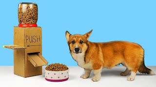 DIY Dog food dispenser from cardboard!