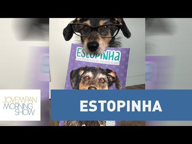 Livro conta história de Estopinha | Morning Show