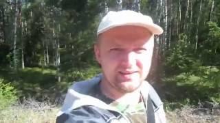 КАК НЕ ЗАБЛУДИТЬСЯ В ЛЕСУ(КОМПАС). ГАДЮКА ИЛИ УЖ?(Сбор грибов.Как ориентироваться с компасом в лесу. Встреча со змеёй., 2016-08-15T18:02:22.000Z)