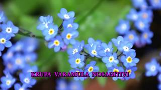 పాడెద దేవా నీ కృపలన్ | Padeda Deva nee krupalan| Sis.R.Prasanna Jyothi