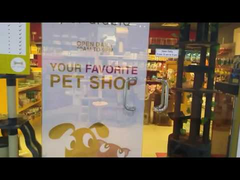 Pets in Bahrain | Middle East Top Pet Store| World Class Food & Smart items with Grooming