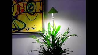 groeilampje voor 1 plantje ?