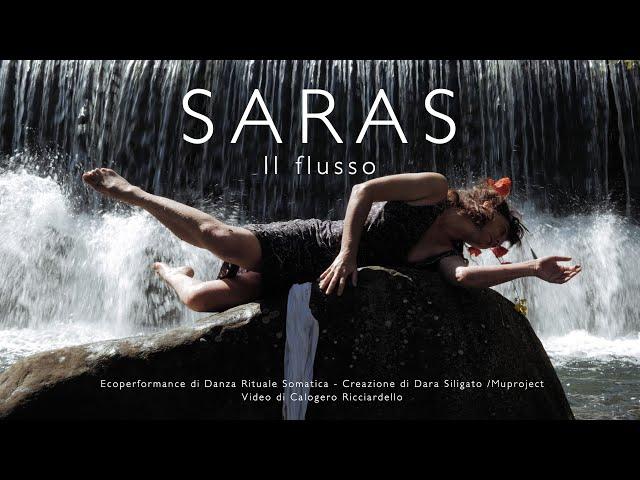 SARAS - Il flusso