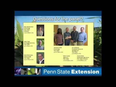 Using Cover Crop Mixtures to Achieve Multiple Goals on the Farm
