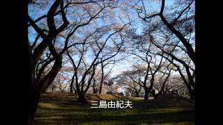 三島由紀夫、今後の創作の構想を語る。 自作朗読とともに(「サーカス」...