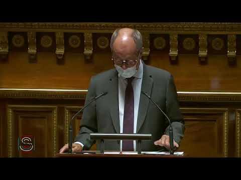 """Jean-Louis LAGOURGUE : PLF 2021 - Mission """"Anciens combattants, mémoire et liens avec la nation"""""""