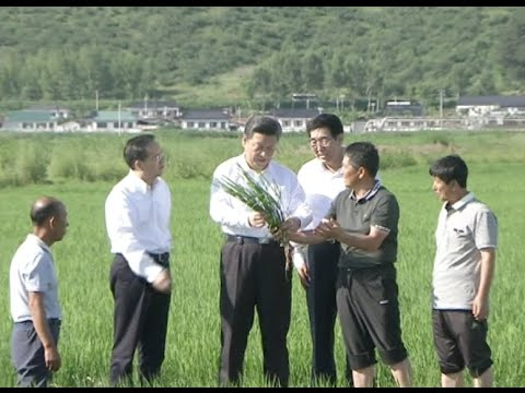 Xi Jinping Visits Northeast China's Jilin Province